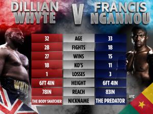 Хирн предлагает устроить два боя между Уайтом и Нганну — в боксе и в ММА